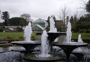 The Botanical Gardens in Cambridge